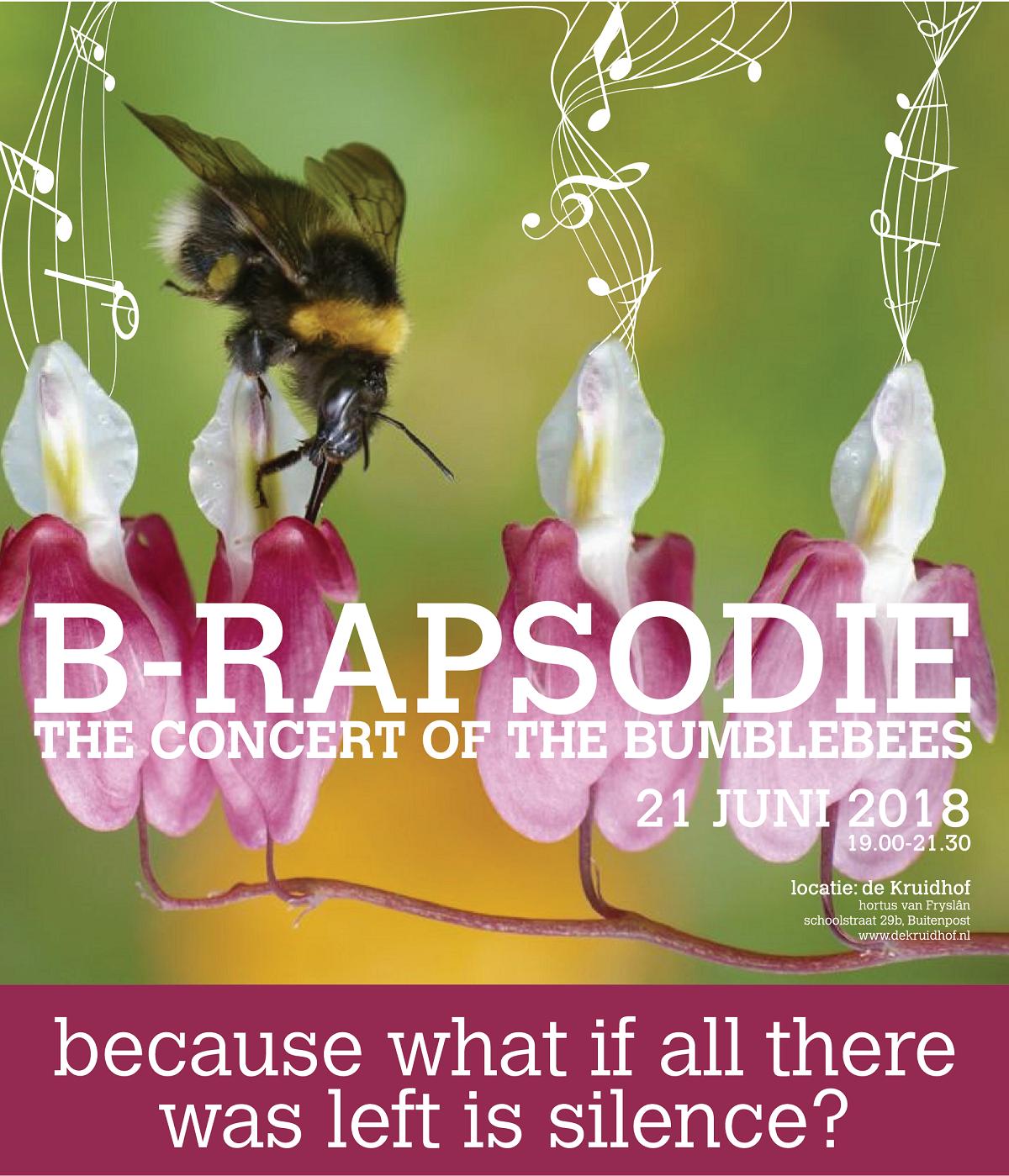 Bumble B-Rapsodie